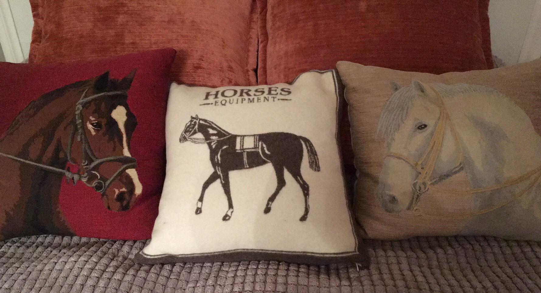 Šonuose - pagalvės iš gobelenų, viduryje iš škotiškos vilnos